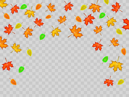 Deciduous made from colorful maple and tree leaves on transparent background. Vector illustration Illustration