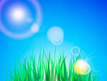 Clean blue sky with green grass. Vector Illustration