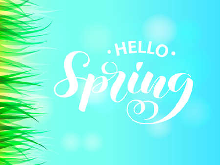 Summer or spring glade with green grass.Spring is coming lettering. Vector illustration