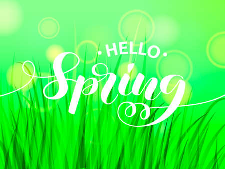 Hello spring letering with green grass. Vector illustration 向量圖像