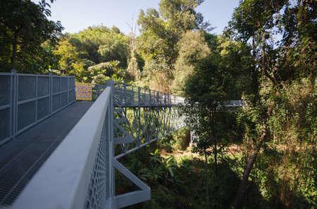 elevated walkway: Canopy walks at Queen sirikit botanic garden Chiang Mai, Thailand