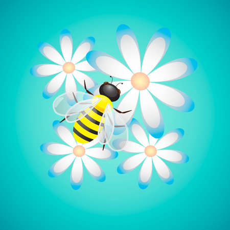 camomiles: Honey Bee  and Camomiles on Blue Background, vector illustration