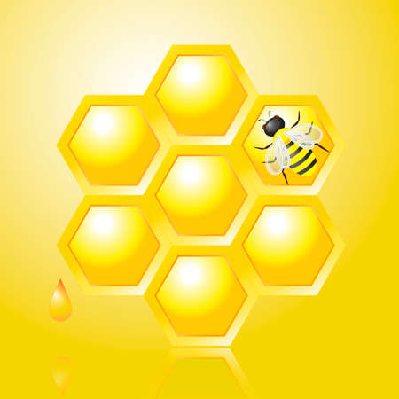 apiculture: Honeycombs and Bee on Yellow Background, vector illustration
