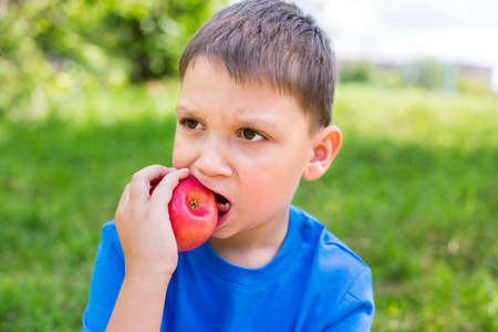 nibbling: Boy holding red apple by one hand and nibbling it Stock Photo