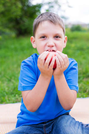 nibbling: Boy holding red apple by two hands and nibbling