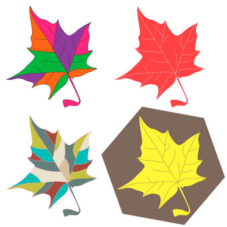 intricacy: Maple leaves set - Vector illustration