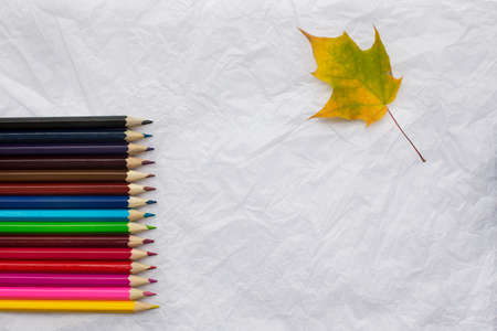 one sheet: Colored pencils in a row on crumpled white sheet of paper and one yellow maple leaf