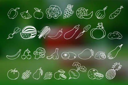 vegetable marrow: Thin line icons of different fruits and vegetables on mesh background