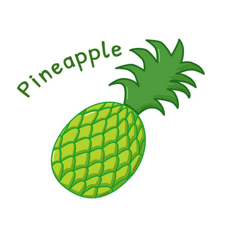 raw: Isolated icon of raw pineapple with name