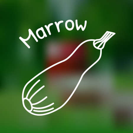 White thin line icon of marrow with name on mesh background