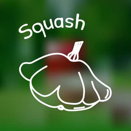 market gardening: White thin line icon of squash with name on mesh background