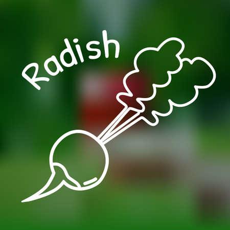 market gardening: White thin line icon of radish with name on mesh background Illustration