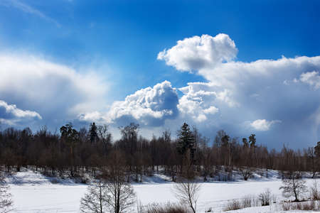 Rural winter landscape of forest, lake and sky