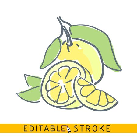 Cutted Lemon with leaves, icon. Line doodle sketch. Editable stroke icon