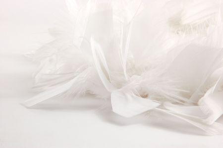 plume blanche: Plume blanche arri�re-plan Banque d'images