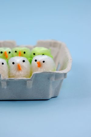 Easter chicks in egg carton