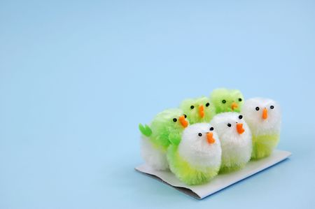 Six easter chicks on piece of card Stock Photo