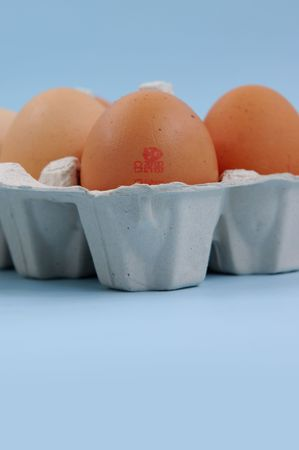 Egg with barcode in carton