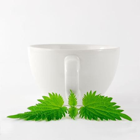 Nettle Herbal Tea Cup