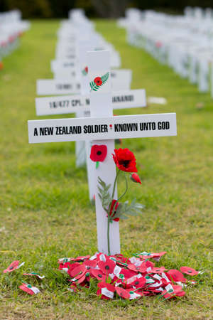 anzac: ANZAC Remembrance Crosses Remembering A New Zealand Soldier Known Unto God at Auckland Domain Stock Photo