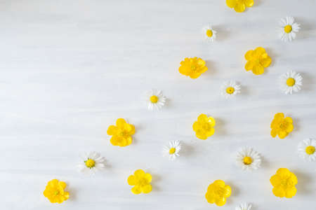 Flat Lay Pattern of Daisys and Buttercups on White Wooden Table with Copy Space