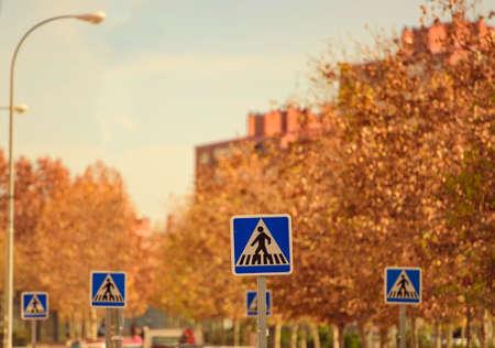 paso de cebra: signos del paso de peatones en zona urbana