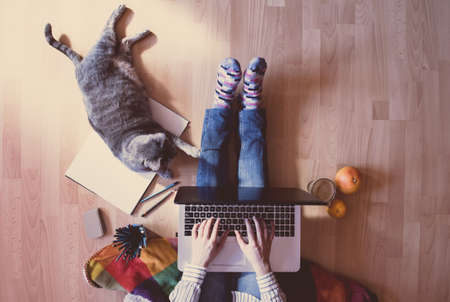 Creative workspace: girl working at the computer assisted by her cat. Stock Photo