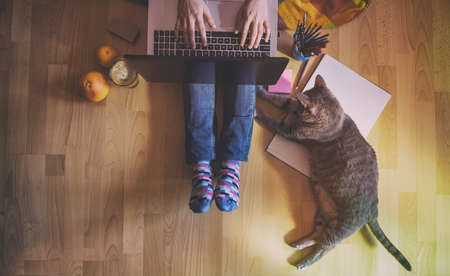Creative workspace: girl working at the computer assisted by her cat. Stock fotó