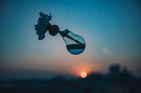Light bulb filled with water at sunset - warm tones