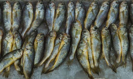 fish vendor: Seafood market in Asia