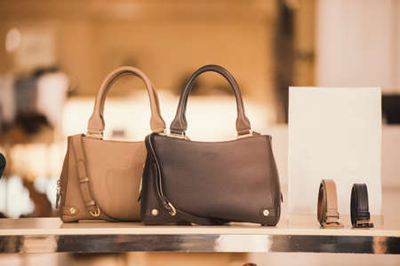 Luxury handbags in a boutique store