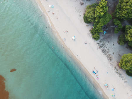 Aerial view of bright turqoise water and beach with pine forest.
