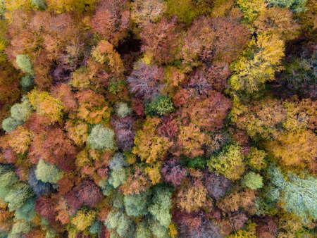Autumn landscape from above in Pestera county, Romania