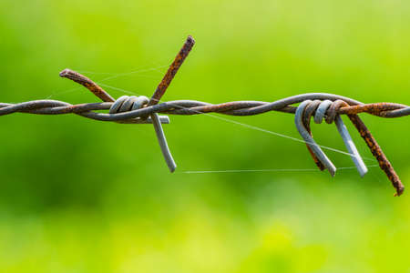 prohibido el paso: Primer plano de cableado para cercar