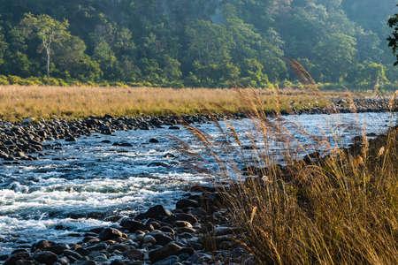 River flowing at Jim Corbett National Park Stock Photo