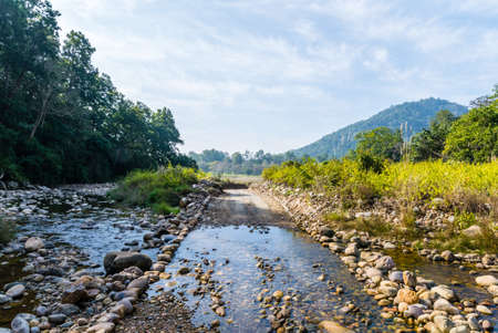 Stream of water flowing at Jim Corbett National Park Stock Photo