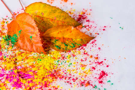 Holi powder used to celebrate festivals of colour in Hinduism and Indian region