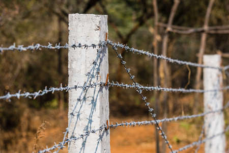 Barbed wired fences for border security