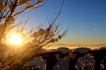 winter sunrise: Winter Sunrise