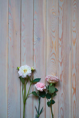 Gentle Vintage Wedding Background and beautiful flowers