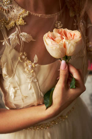 bride holds a rose flower in hands
