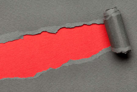 Torn grey paper with red copyspace for your message. Paper roll photo