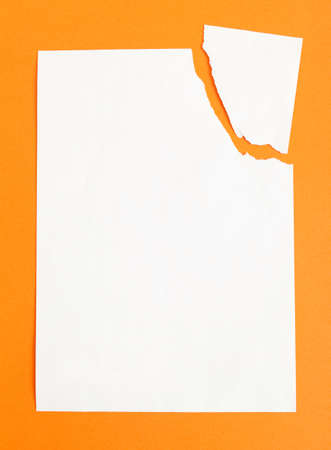 Sheet of white paper ripped in two pieces, isolated on orange background, copyspace photo