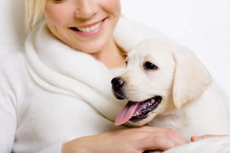 labrador puppy: Closeup of Labrador puppy on the hands of smiley woman in white sweater