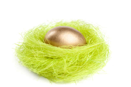 Golden egg is in the nest of green sisal fibre, isolated on white photo