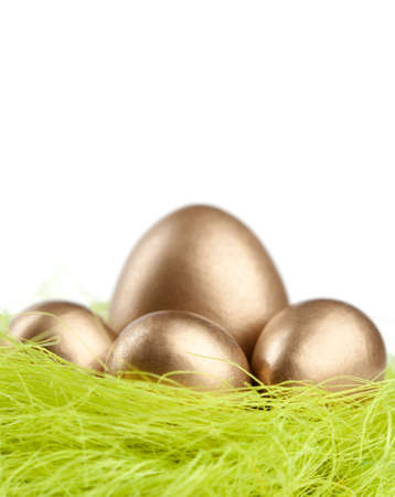 chucky: Golden eggs are in the nest of green sisal material, isolated on white