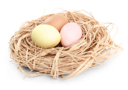 Three colored easter eggs are in the nest, isolated on white photo