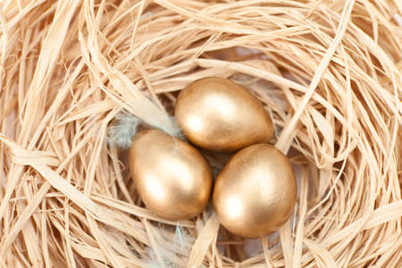 the feast of the passover: Nest with three golden quail eggs