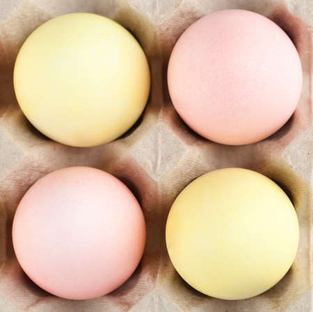 chucky: Colorful eggs are in the cardboard box for egg delivering Stock Photo