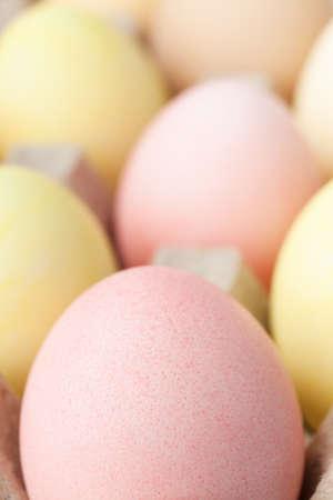 chucky: Multicolored eggs are in the cardboard box for egg delivering